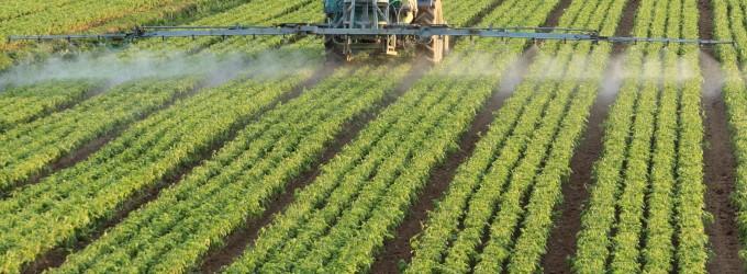 Agroseguros: Cosechas y producción